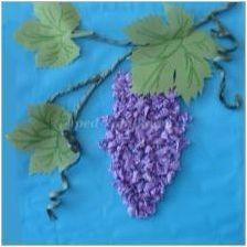Приготвяне на Applique & # 171 + грозде & # 187 +