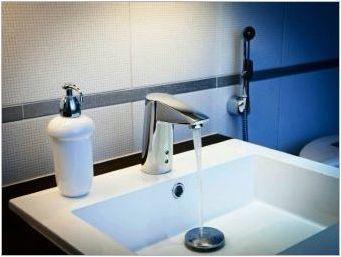 Hansgrohe Hygienic души: характеристики и преглед на моделите