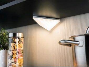 LED лампи за кухнята: какво се случва и как да ги изберем?