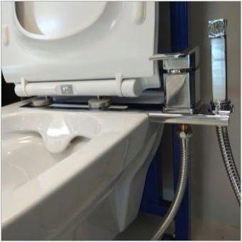 Очевидни конзоли и други тоалетни устройства