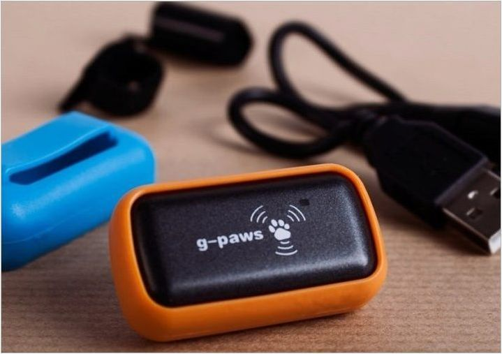 GPS тракери за кучета: Защо имате нужда и как да ги изберем?