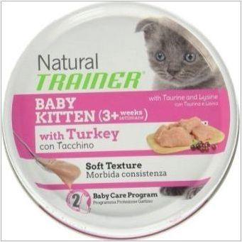 Характеристики на котките за котки и котки естествен треньор