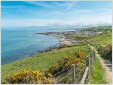 Каква е разликата между уелския коркови жилетка от уелс Cherg-Pembroke?