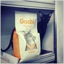 Преглед на Госби