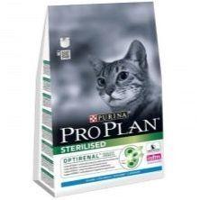Съвети за избор на фуражи за котките порода Sphinx