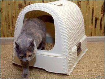 Затворени тоалетни за котки и котки: описание, подбор и употреба
