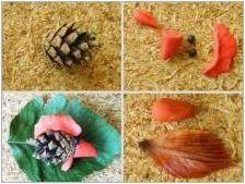Занаяти от борови конуси