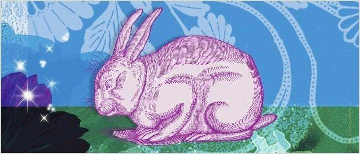 1975 - Година на животното и какви са неговите характеристики?