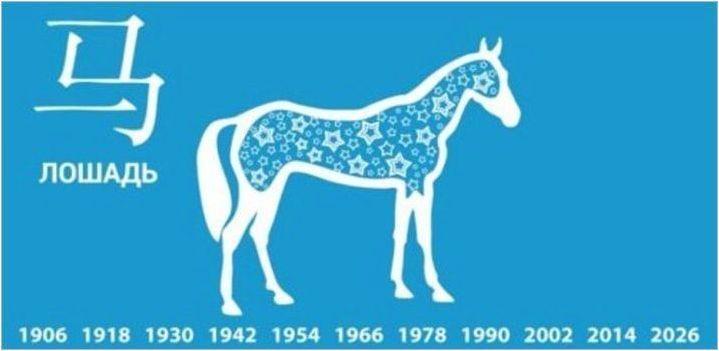 2002 - Година на животното и какво е характерно за неговите представители?