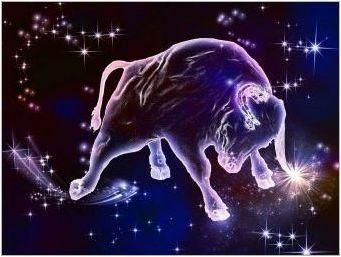 2020 - Година на което животно и какво е характерно за него?