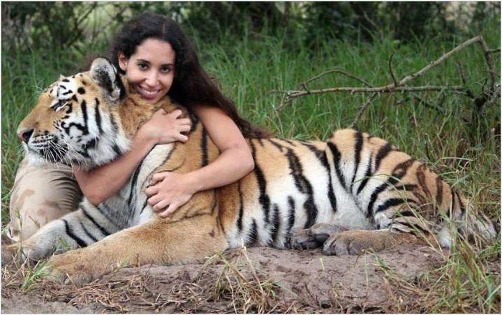 Година на тигър: Символ Описание и характеристики на хората