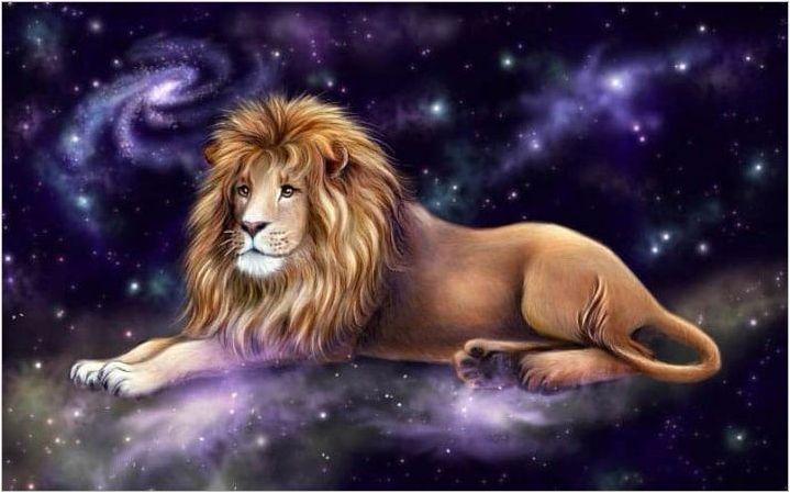 Lion Girl: характер, съвети за образование и избор на талисман