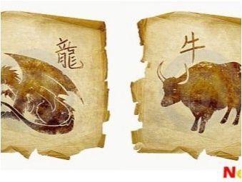 Съвместимост с бик и дракон в приятелство, работа и любов