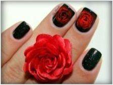 Как да нарисувате роза върху ноктите: дизайн опции и методи за рисуване