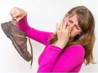Съвети за избор на сушилня с ултравиолетово за обувки