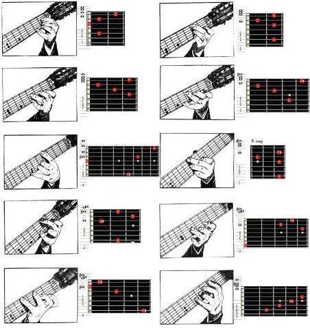 Всичко около седем времеви китари