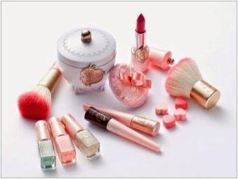 Декоративна корейска козметика: функции и преглед на марката
