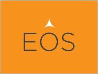 Eos Cosmetics: преглед, плюсове и минуси