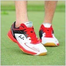 Как да изберем тенис на маса?