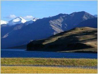 Mongol Cashmere: характеристики и характеристики на избор