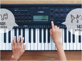 Всичко за играта на синтезатора