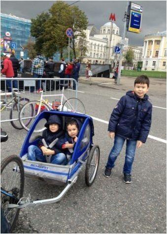 Бедототори за деца: Изисквания и обхват на модела