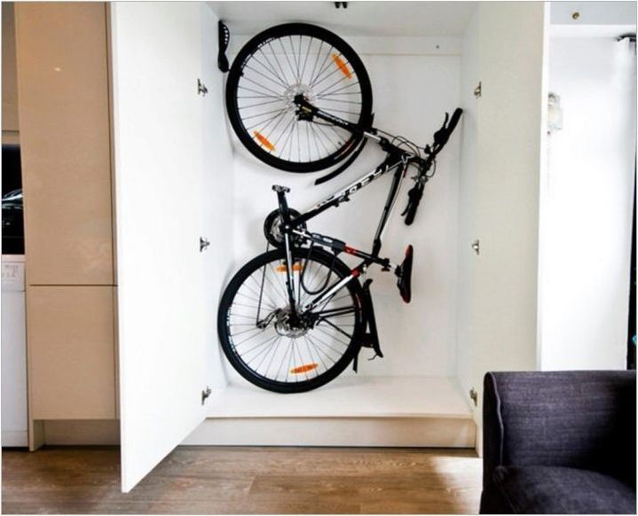 Bike Capteners Общ преглед