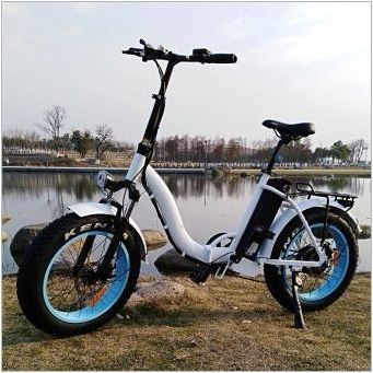 Детски електрически велосипеди: разновидности, марки, избор, използване на правила