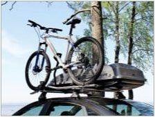 Кола за велосипед: Характеристики и селекция