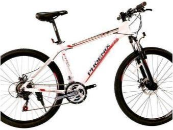 Phoenix Bikes: преглед на модела