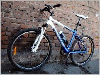 Преглед на велосипеда Уилър