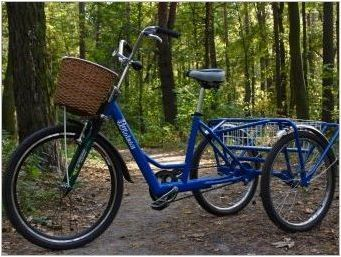 Стъпки за велосипеди: видове и съвети за избор