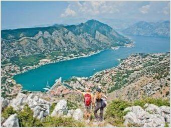 Дейности в Черна гора