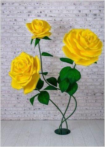 Растителни рози от Изолон