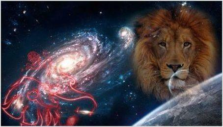 Човек лъв, роден в годината на Кабана: характеристики и съвместимост