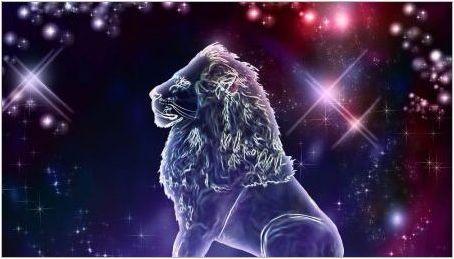 Характеристики на мъжки лъв, роден в заек