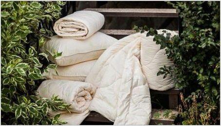 Какво одеяло е по-добре да изберете: камила или овце?