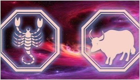 Мъжко Скорпион, роден в годината на бика: характеристики и съвместимост