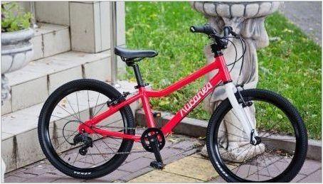 Преглед на детските велосипедни модели & # 171 + Lisapad & # 187 +