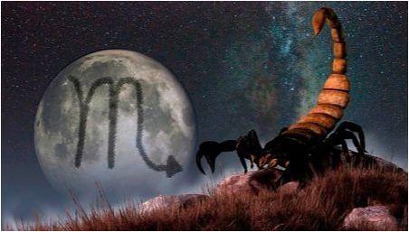 Съвместимост на скорпиона с скорпион в различни сфери на живота